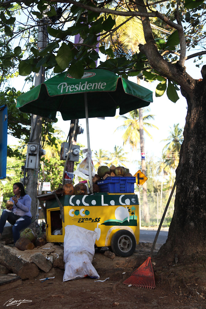 las terrenas republique dominicaine dominicaine